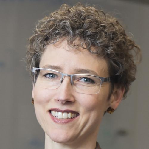 Erica Carlson      Professor of Physics  Purdue University