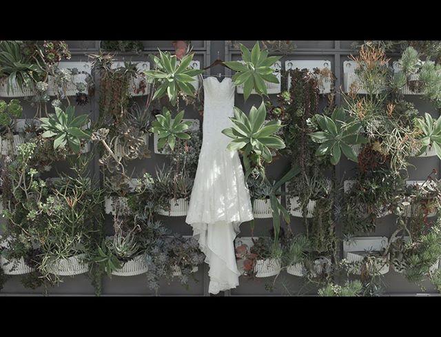 Sophia's dress! . . . . Videography:@lensonproductions #lensonweddings #lensonproductions #radiantbride  #ocwedding #californiawedding  #californialove #wedding #weddingvideo #weddingideas #rooftopwedding #orangecountywedding #weddingfilm #theknot #weddingcinema #weddinginspo #weddingvideography #realweddings