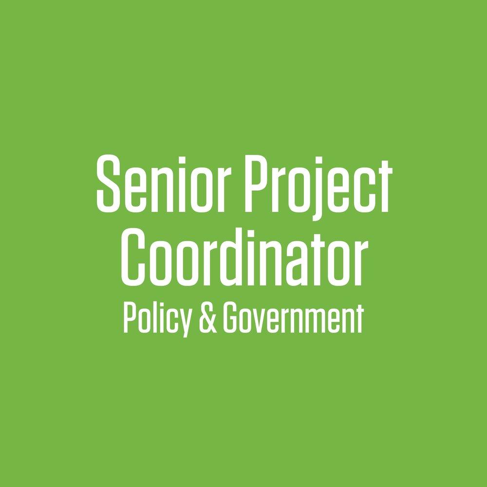 senior project coordinator.jpg