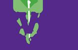 svbt-logo2.png