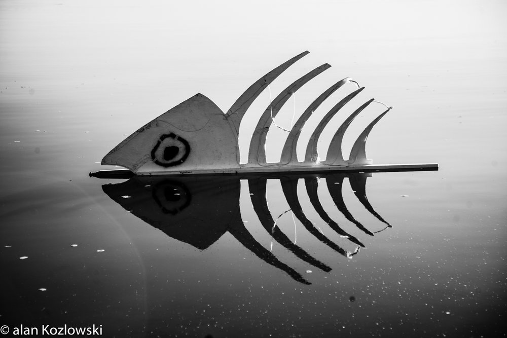 Bombay Beach Biennale-68.jpg