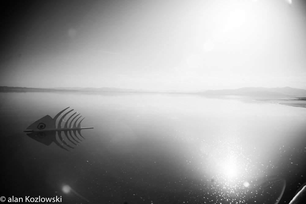 Bombay Beach Biennale-69.jpg