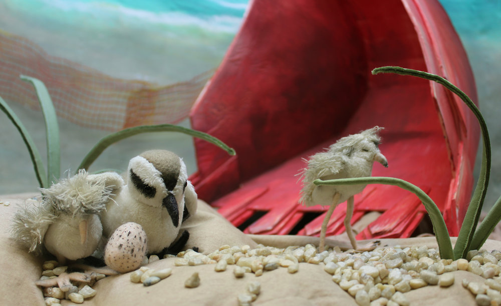 The beach-nesting snowy plover is endangered due to coastal real estate development. Plover sculptures have poseable wire legs,excavator scoop is fabricated from painted foam-core.