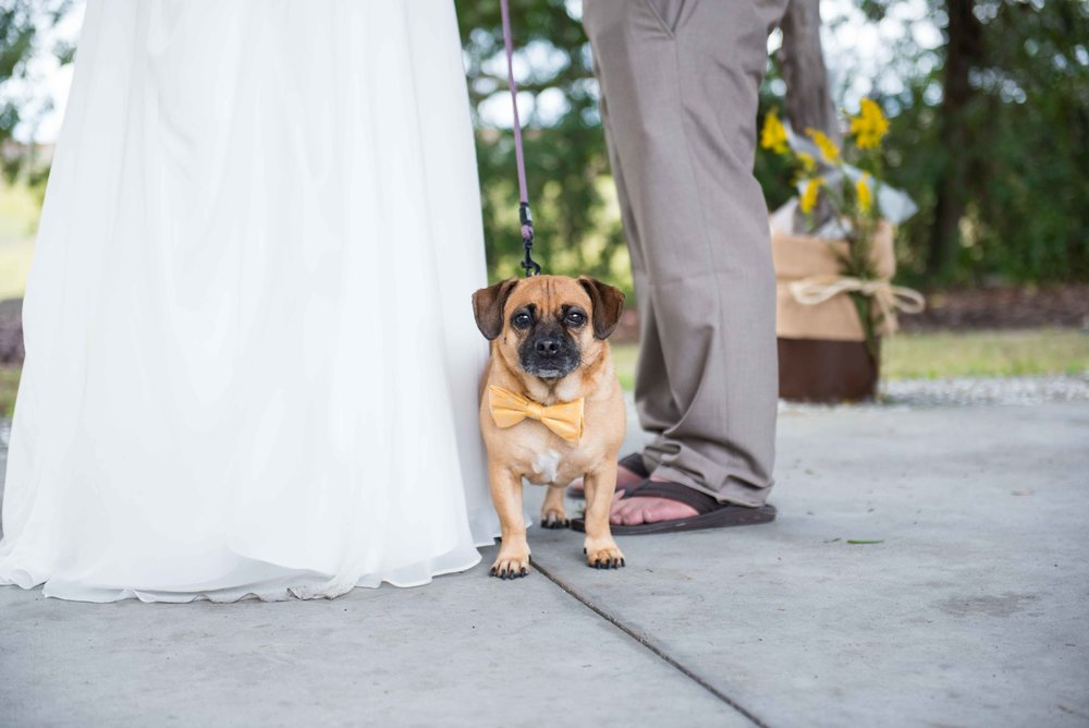 Folly Beach Weddings Small-7.jpg