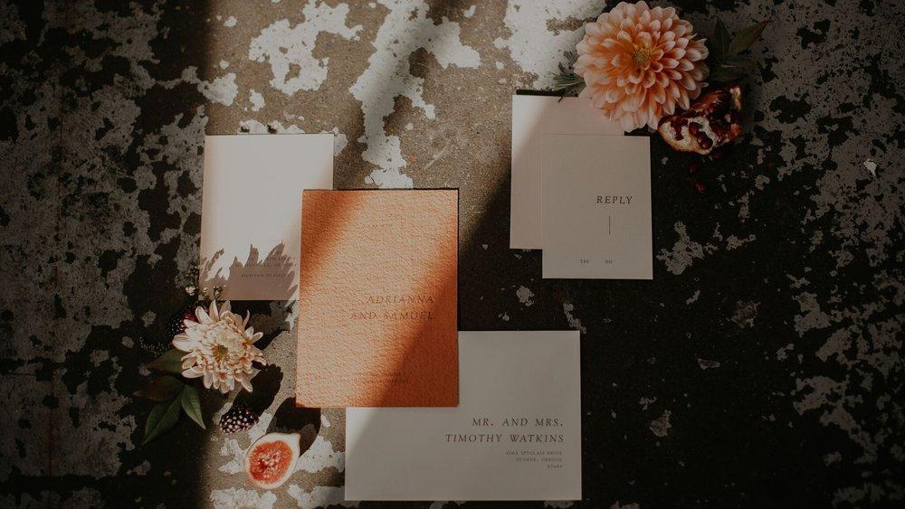 The Bindery | Ashley Spence