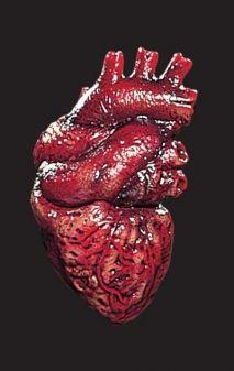 fake heart.jpg