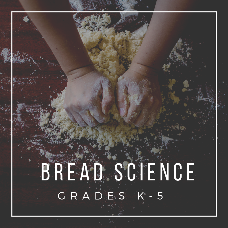 Bread Science.png