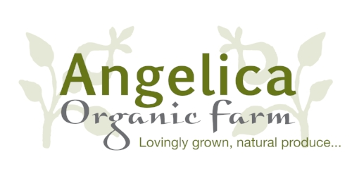 Angelica Organic Farm