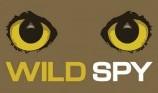 wild spy logo.jpg