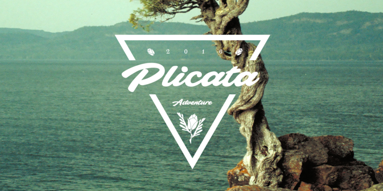 plicata_poster01.png