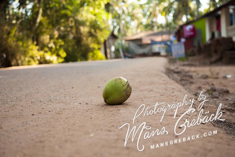 Street Coconut