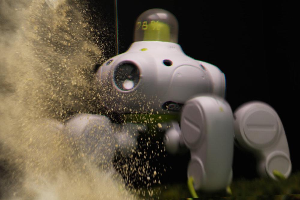 roboticblur.jpg