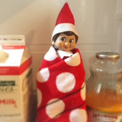 elf on the shelf in the fridge.jpg