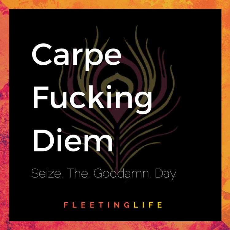 Fleetinglife (2).png