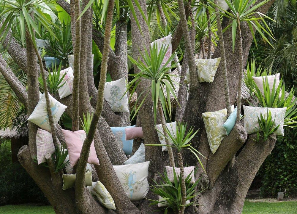 stimmung palme.jpg