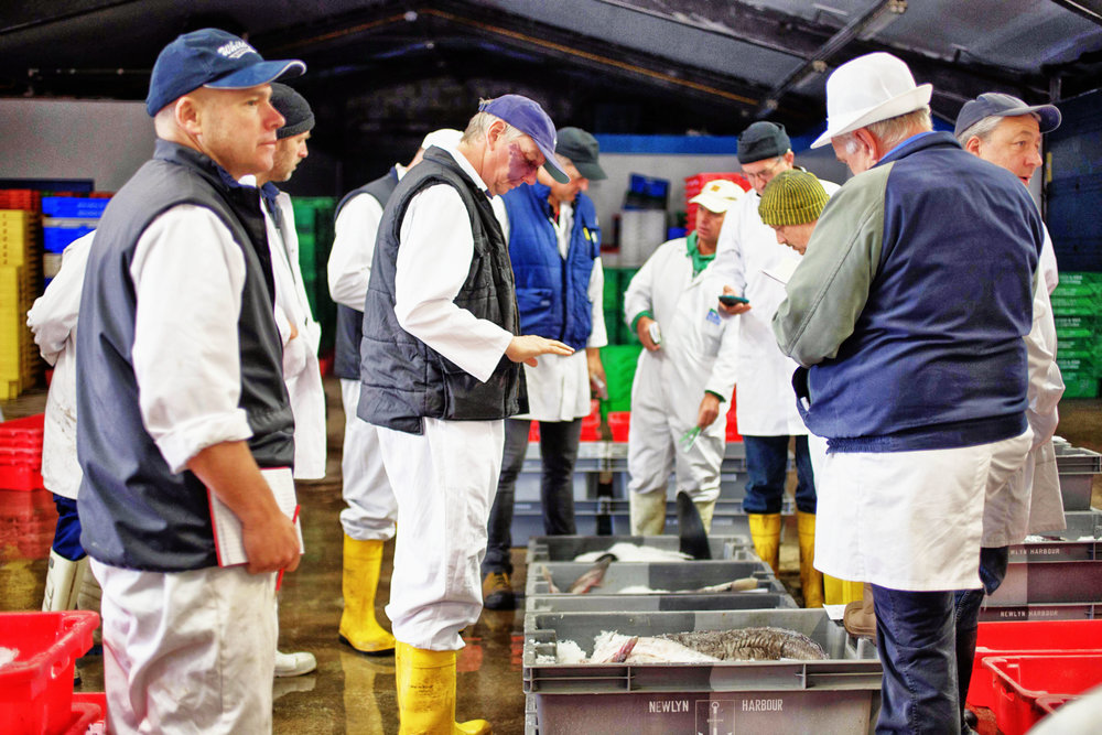 Beth-Druce-Newlyn-Fish-Auction-Summer-2016-9.jpg