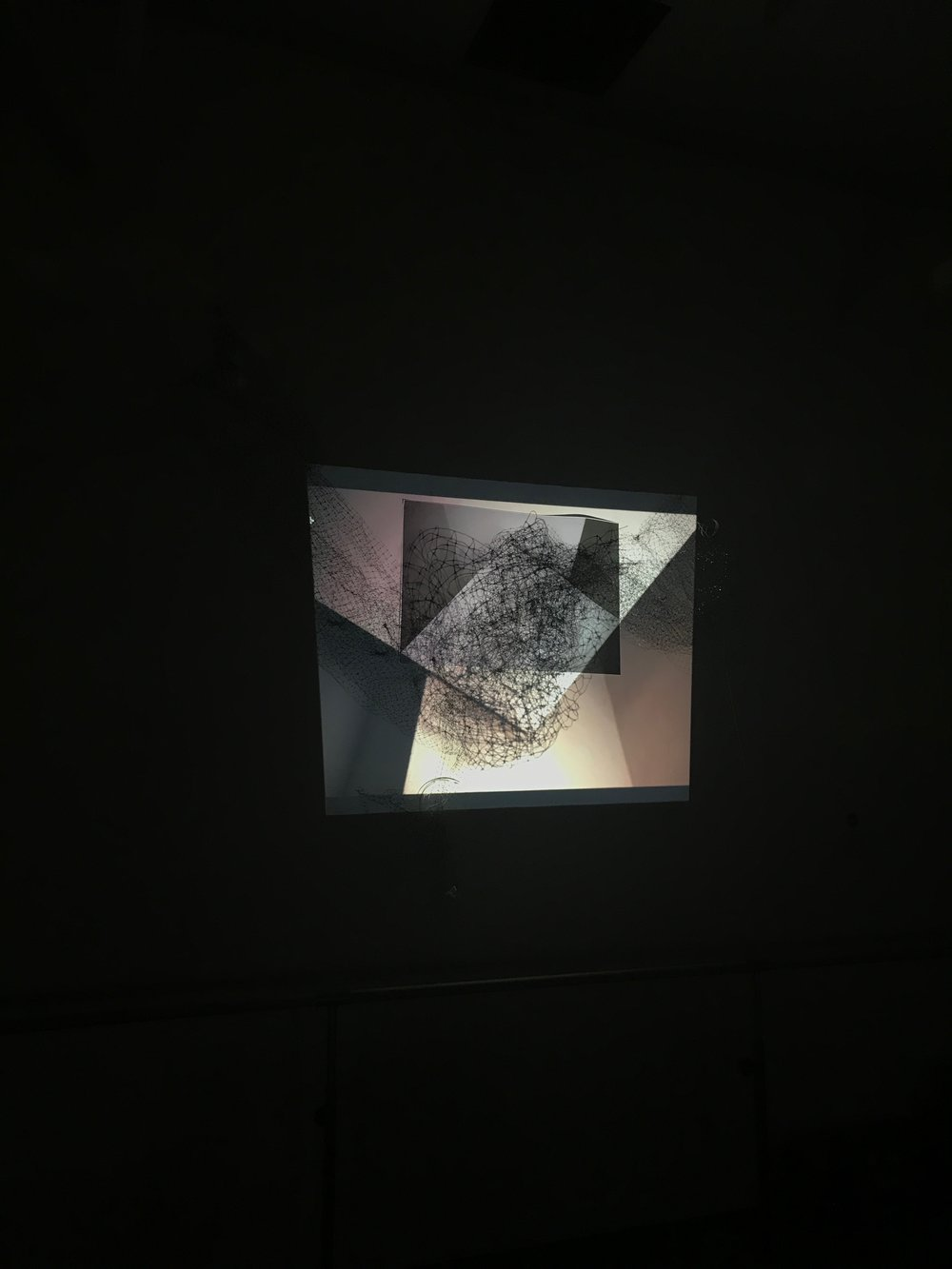 Untitled. (2017) Installation View. B&W Photographic Print, Projection, and Bird Netting.     This installation was produced during my time at the Feminist Art Conference Residency, in Toronto, Ontario, May 12-26th.  Untitled  (2017) uses three collective modalities—photographic print, bird netting, and projection—to contemplate the meanings of blackness, the violence of movement, and the ruse of perception. Each modality works in tandem to present an ongoing process of becoming through the cycles of deconstruction and reconstruction that are layered on top of each other.