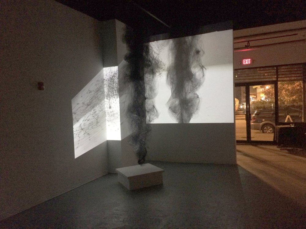 ...Other Inclinations (2017) from series, Hauntings and Other Inclinations; (installation view)   On view November 10-30 2017 with LabBodies Performance Art Review III, Boundaries, Borders, and Barricades--FREEDOM