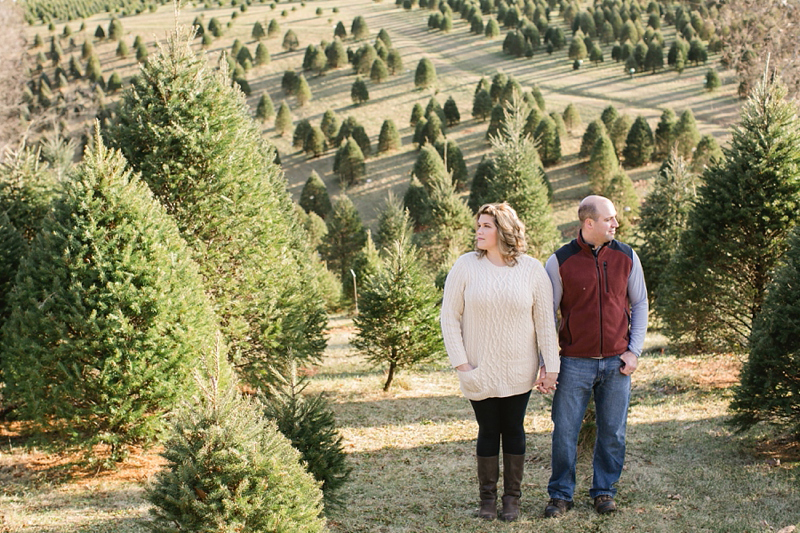 Lancaster_Christmas_Tree_Farm_01