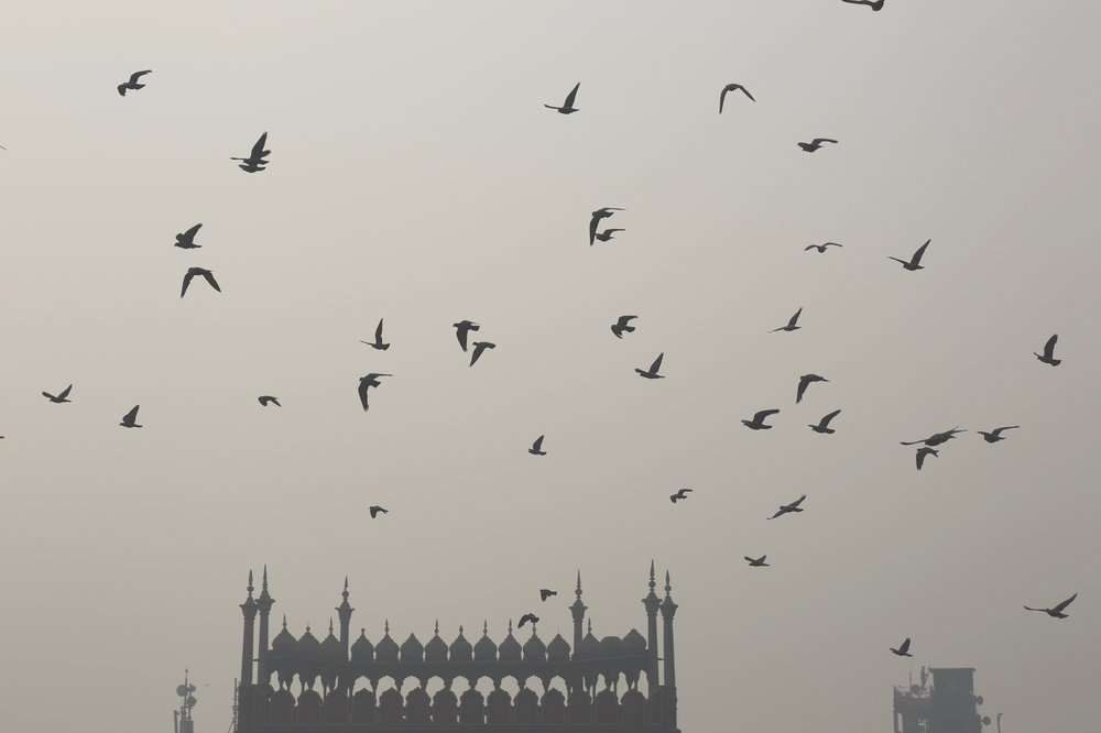 Delhi is currently the world's most polluted city. India's largest mosque shrouded in pollution during the Noon Prayer, as pollution levels cross the safe limit by 17 times. (Jama Masjid, Delhi)