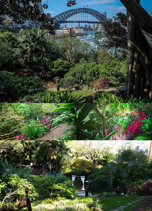 Wendy's Secret Garden, Sydney.jpg