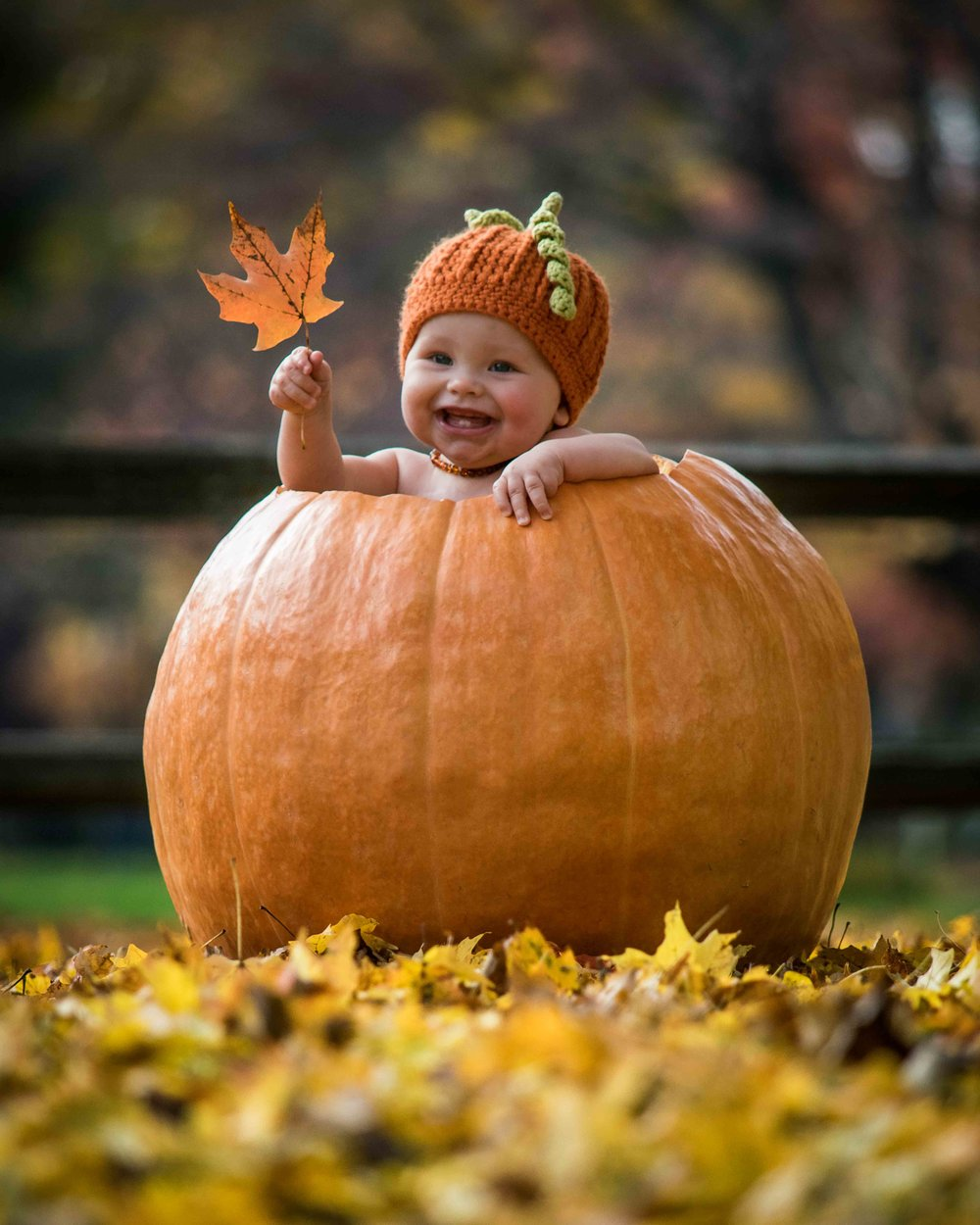 CDP Baby in a pumpkin for Halloween.jpg