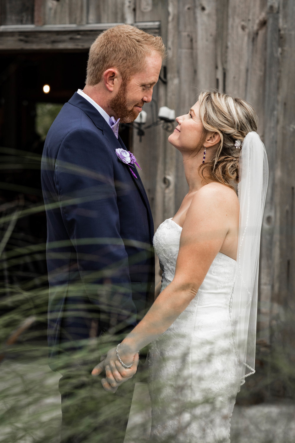 Bride and groom portrait with tall grass in front of them and a rustic barn behind