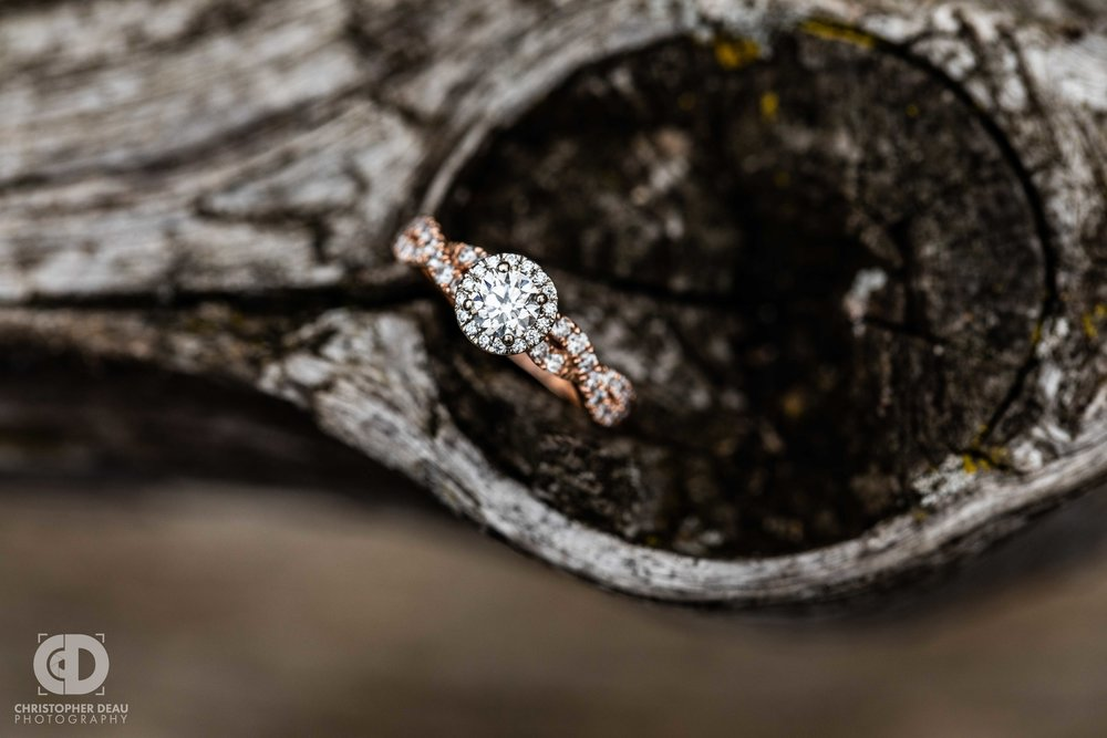 close up ring photo in a knot on a wooden fence