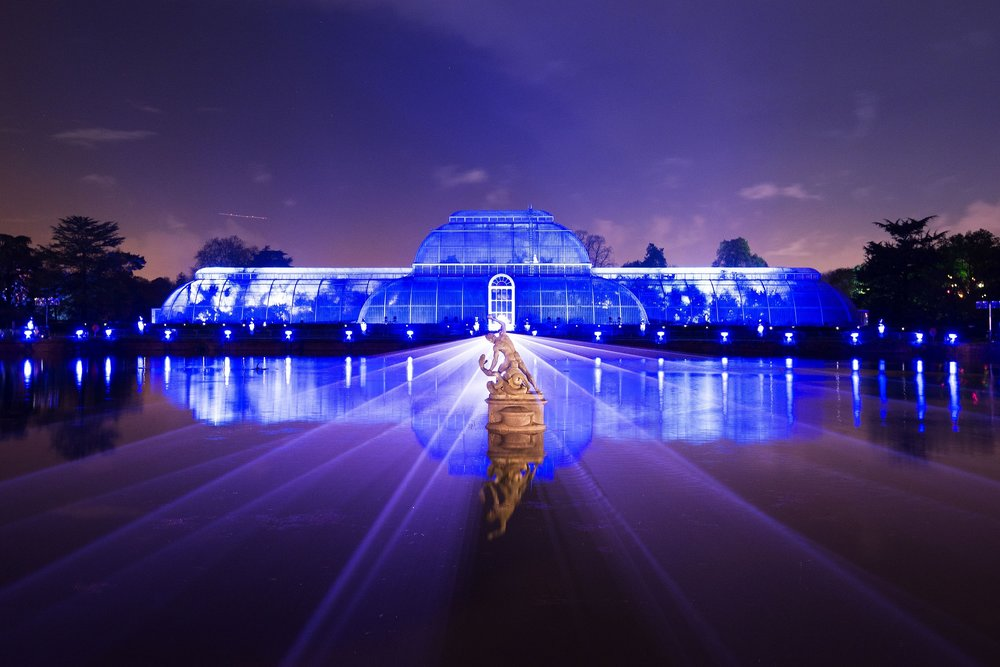 Palm House Illuminations, Jeff Eden, Royal Botanical Gardens Kew