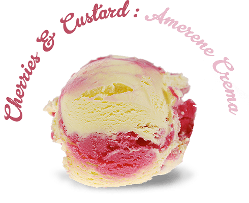 Piece-of-Velvet-cherry-custard-Ice-Cream.png