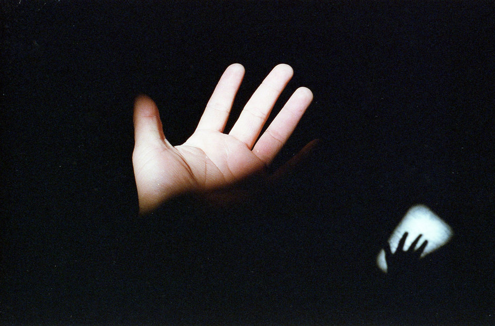 human-swine: Hand//2015