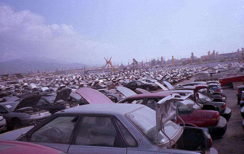human-swine: Cars//2014
