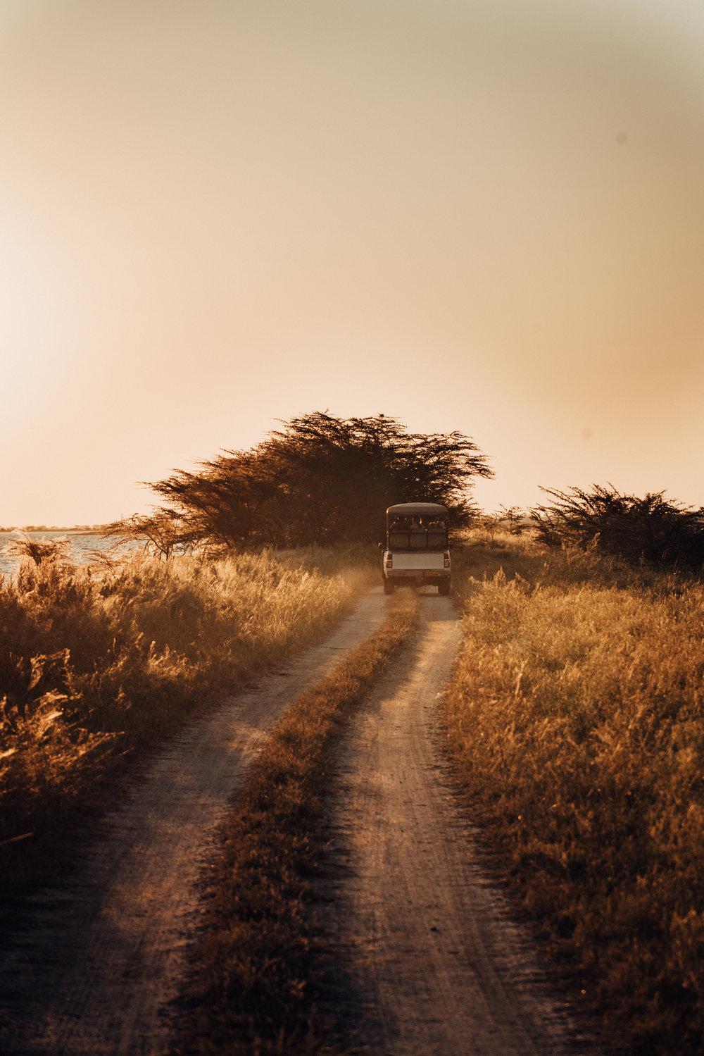 Road Less Traveled_2.jpg