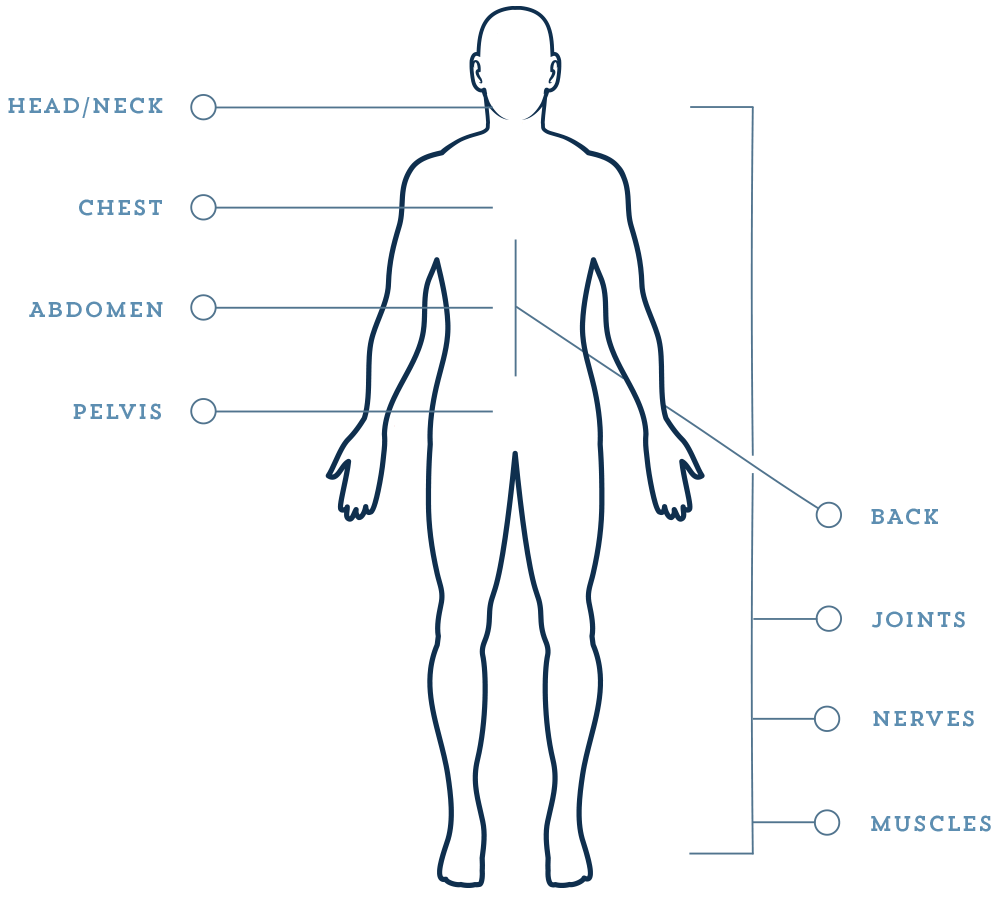 body diagram