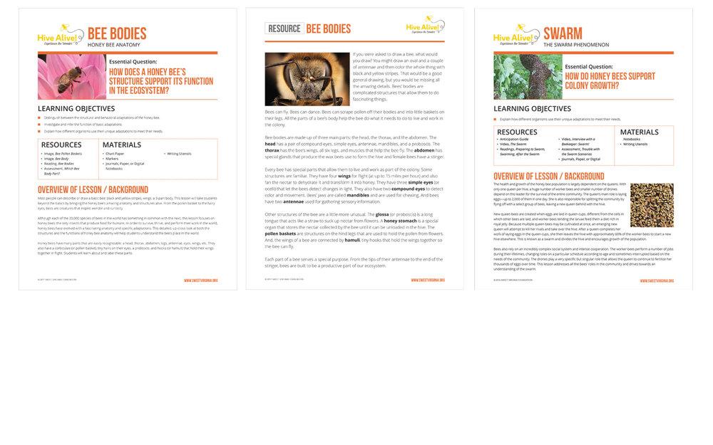Nonprofit Graphic Design Print Marketing