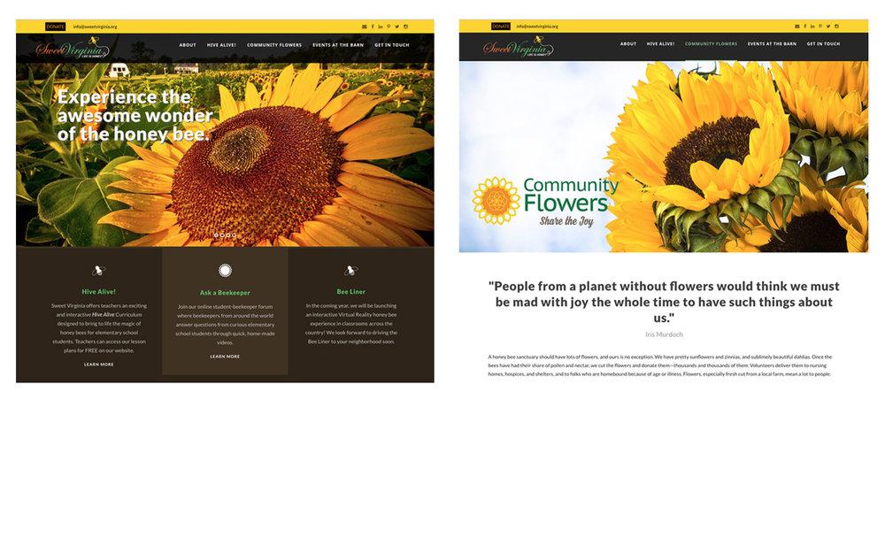 Nonprofit Website Sample