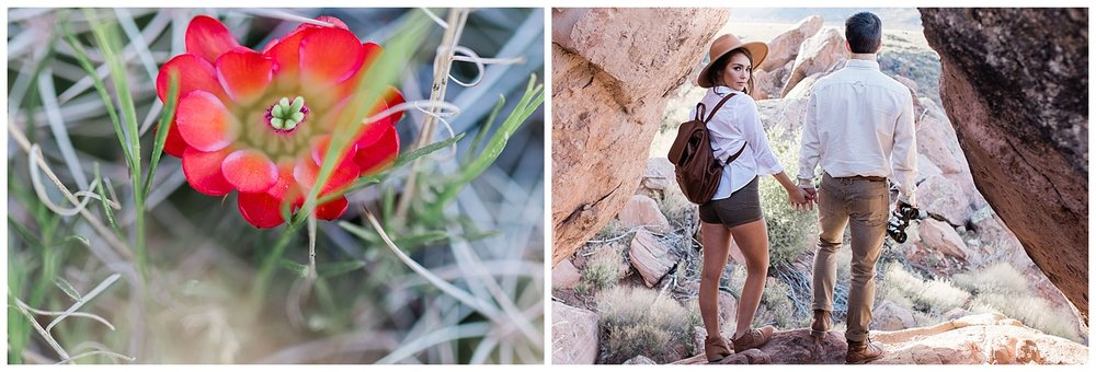 Elizabeth M Photography Northern Virginia Destination Wedding and Elopement Photographer Adventure Photography Zion National Park_0142.jpg