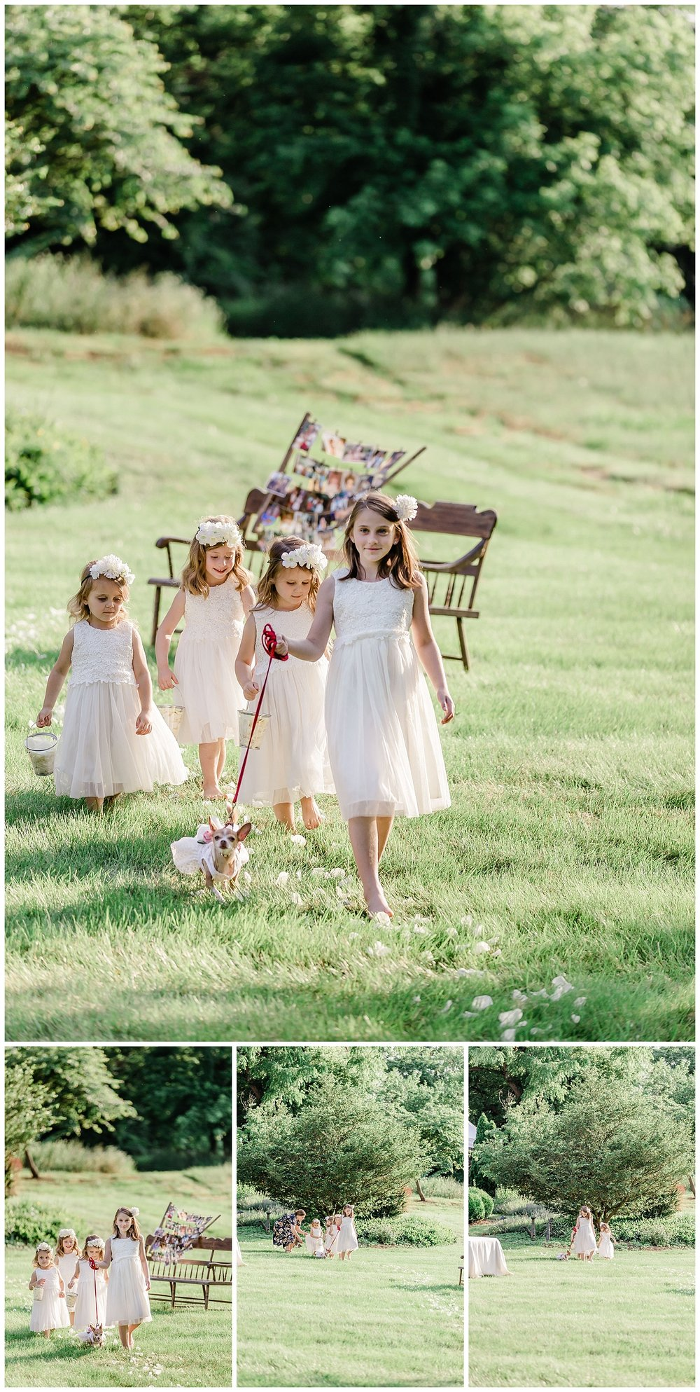 Elizabeth M Photography Charlottesville Wedding Photography_0278.jpg
