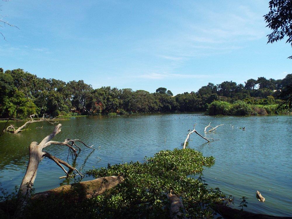 Parc de Tsaratsoatra