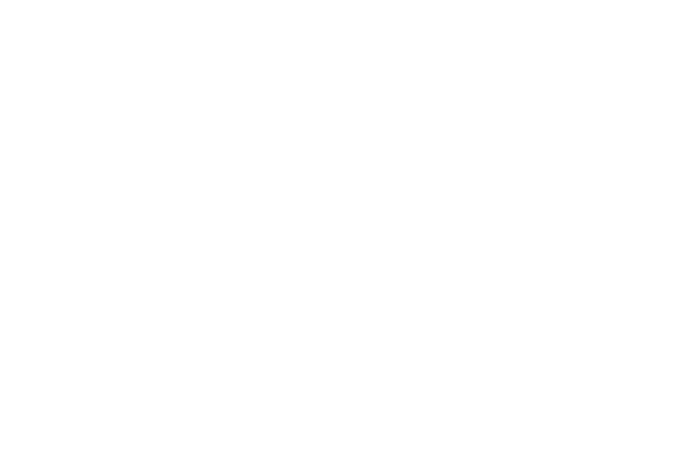 OFFICIAL SELECTION - Hamilton International Film Festival  - 2018 (1).png
