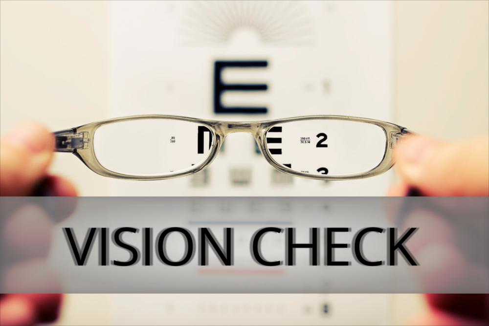 Vision Check.png