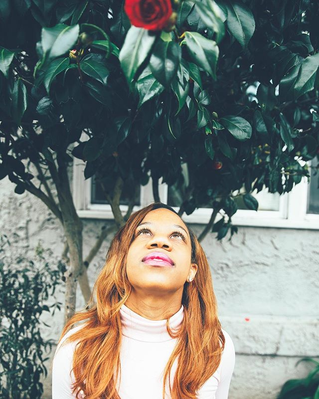 Happy first day of #Spring! I'm looking forward new opportunities, a renewal in relationships and ongoing love! 💕🌸 . . . . . . #werquedominique #livefabulously #slayconsistently #blackgirl #blackgirlmagic #blackexcellence #browngirls #browngirlblog #browngirlsblog #browngirlbloggers #renewal #spring #joy #sunshine #progress #springflowers