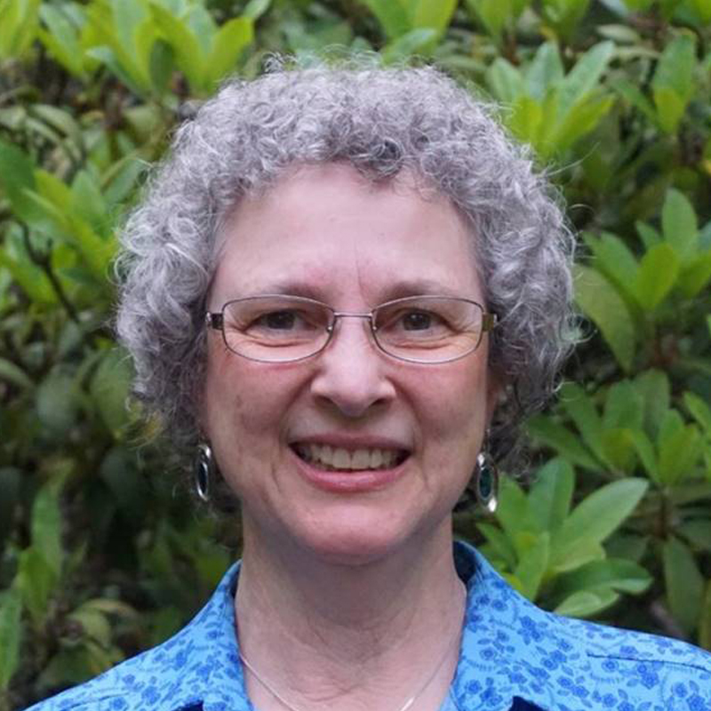 Sue Carlson project^ Development