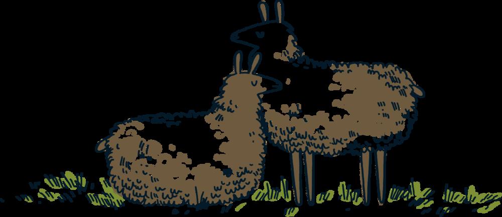 Llamas.png