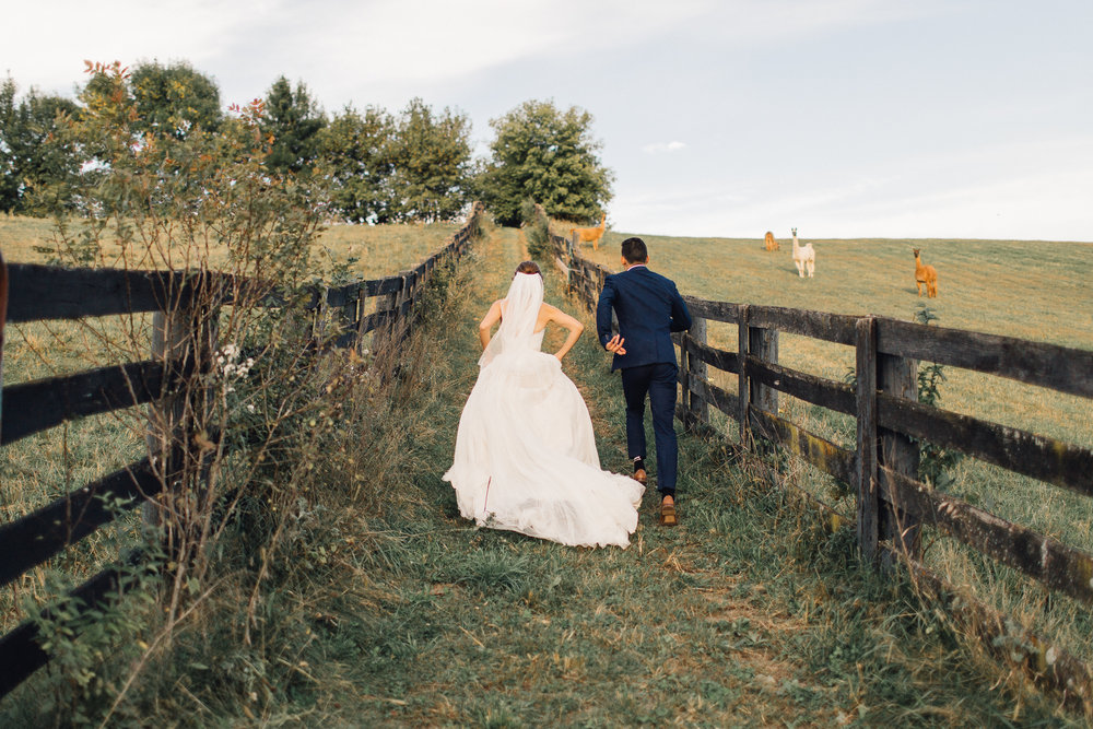 20180909_AnastasiaChandler_wedding_656.jpg