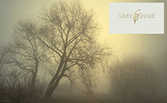 GriefShare Tree_Logo 235x145.jpg