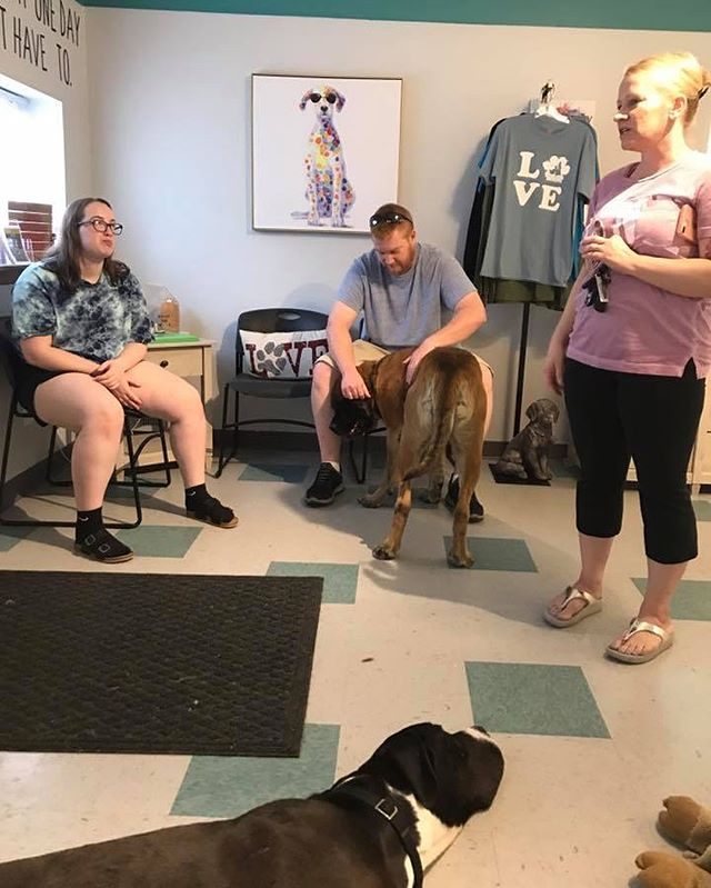 Yesterday we had visitors today at the Dog House. Jen, Joe, and Abbey brought donations that Abbey collected for our dogs. Hammer and Bash were our greeters and the loved it. Thank you Abbey for helping our dogs. ❤️❤️❤️❤️