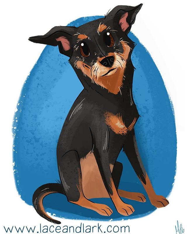 I loved drawing all of Rizzo's whiskers! Email me at Melanie@laceandlark.com to start your own pet portrait today!  #petportait #art #illustration #cartoondog #portrait #digitalillustration #digitalart #cartoon #azartist #azart #laceandlark #mutt #mixedbreed #dogsofinstagram #dailydog