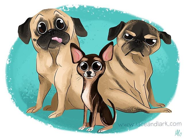 Happy Friday! We're back and pet portraits are still available! Email melanie@laceandlark.com for more details!