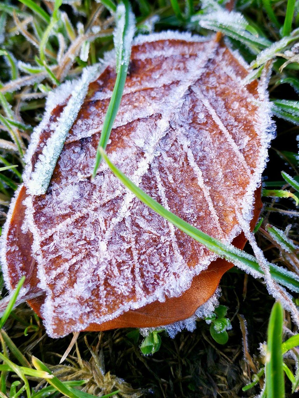 06-Winter-is-coming.jpg